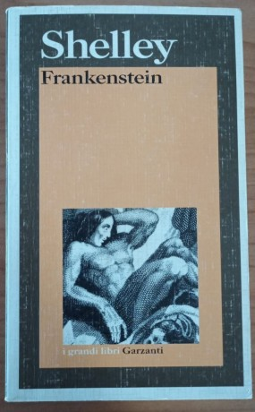 frankenstein-ovvero-il-moderno-prometeo-di-mary-shelley-big-1