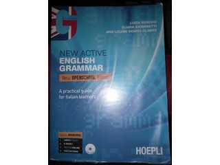 New Active English grammar